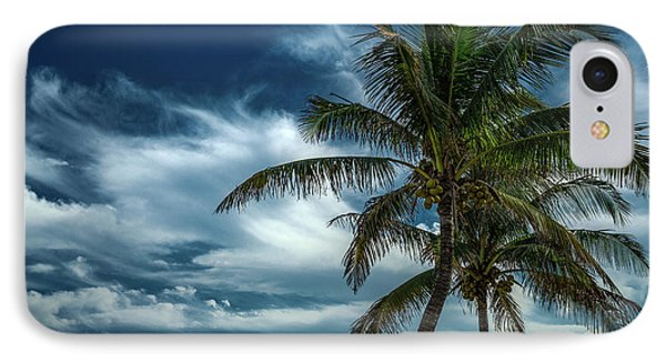 Palm Tree Against The Sky IPhone Case