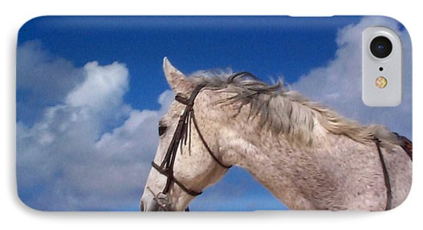 Pancho IPhone Case