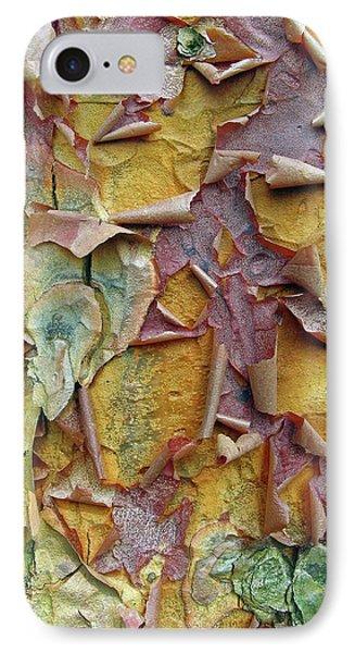 Paperbark Maple Tree IPhone Case