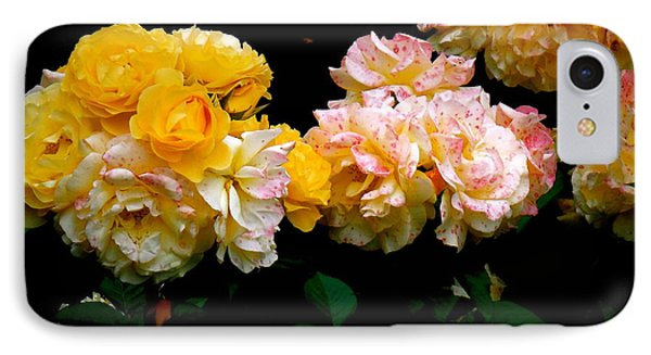 Parade Of Roses  IPhone Case