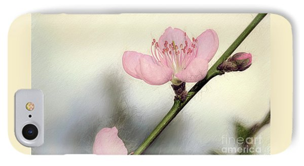 IPhone Case featuring the photograph Pastel Spring Blossom By Kaye Menner by Kaye Menner