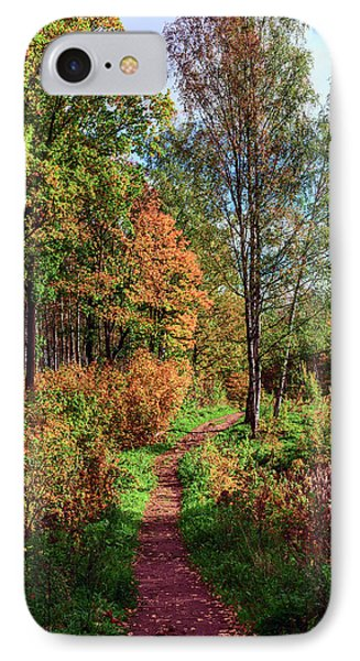 path in a beautiful country Park on a Sunny autumn day IPhone Case
