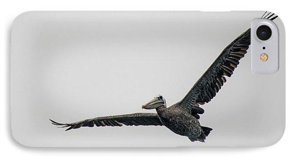 Pelican In Flight IPhone Case