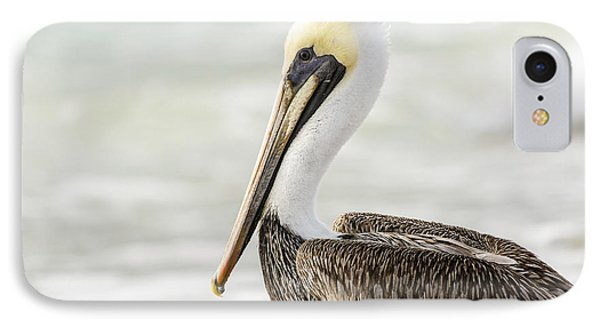 Pelican Pose IPhone Case