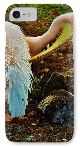 Pelican Preening IPhone Case