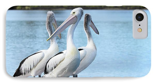 Pelicans 6663. IPhone Case
