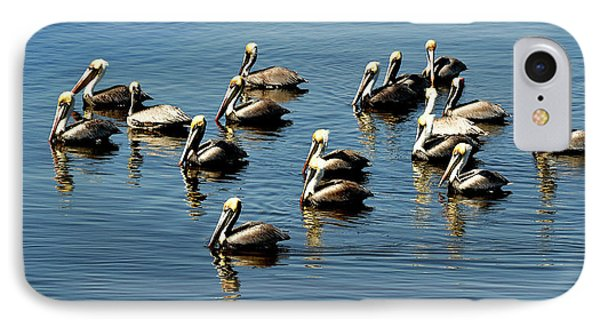 Pelicans Blue IPhone Case