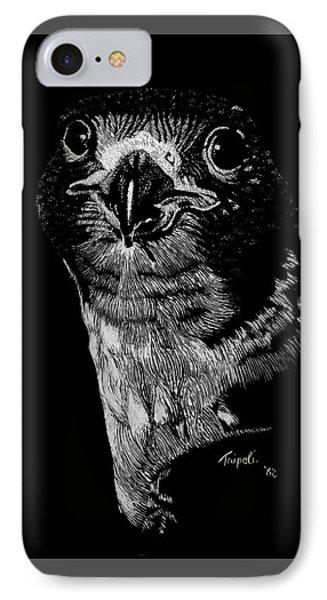 Peregrin Falcon IPhone Case