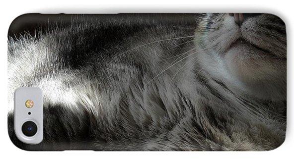 Pet Portrait - Lily Three IPhone Case