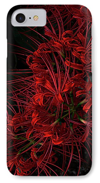 Petals Of Fireworks IPhone Case