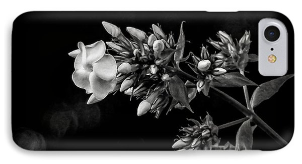 Phlox In Black And White IPhone Case