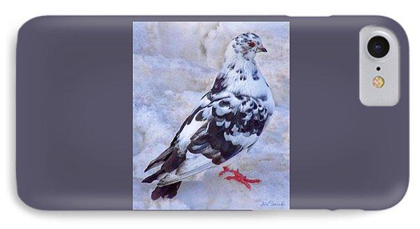 Pigeon On Ice  1 IPhone Case