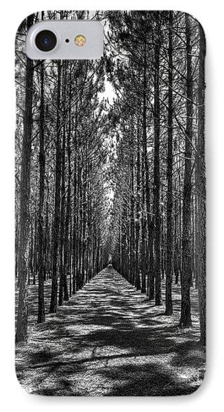 Pine Plantation 5655_6_7 IPhone Case