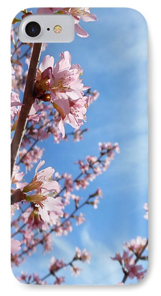 Pink Cherry Blossoms Branching Up To The Sky IPhone Case