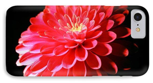 Pink Dahlia1 IPhone Case