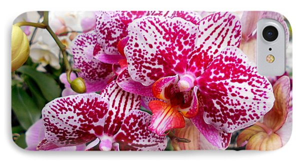 Pink Moth Orchids IPhone Case
