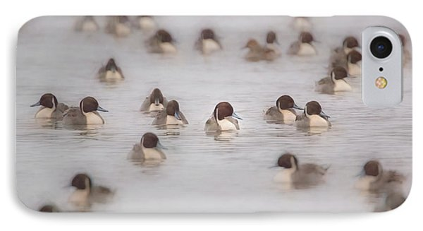 Pintail Repeat  IPhone Case