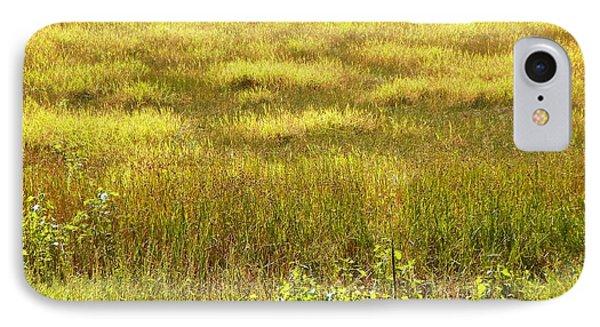 Plains At The Bosque IPhone Case
