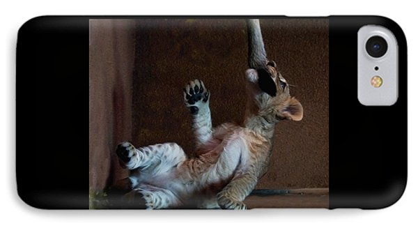 Playful Kitty IPhone Case
