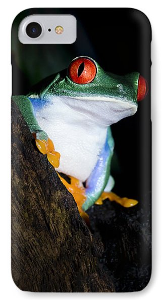 Playing It Cool IPhone Case