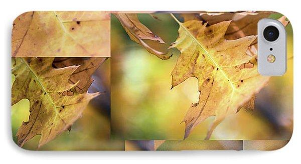 Pleasures Of Autumn -  IPhone Case