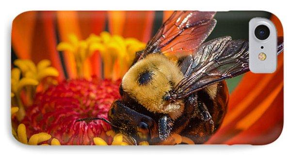 Pollen Plenty IPhone Case