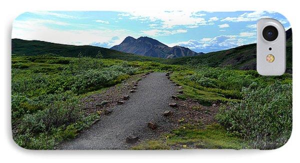 Polychrome Pass Trail, Denali IPhone Case