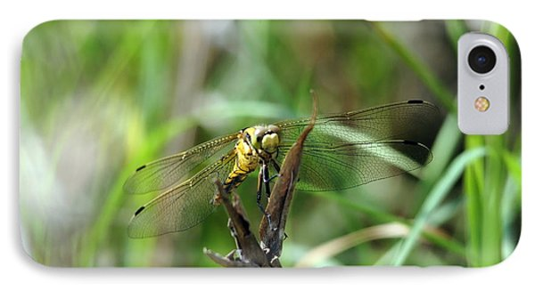 Portrait Of A Dragonfly IPhone Case
