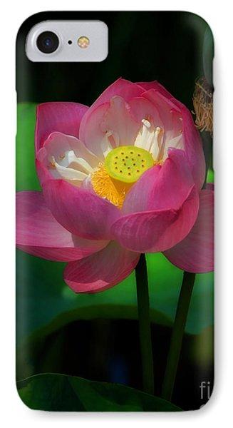 Portrait Of A Lotus IPhone Case
