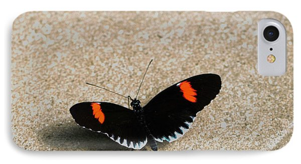 Postman Butterfly IPhone Case