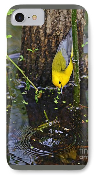 Prothonotary Warbler IPhone Case