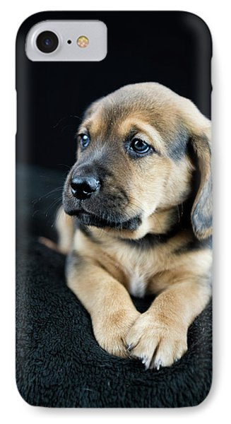 Puppy Portrait IPhone Case