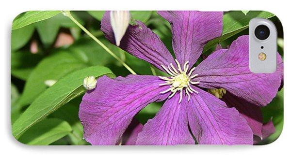 Purple Delite IPhone Case