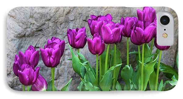 Tulip iPhone 8 Case - Purple Tulips by Tom Mc Nemar
