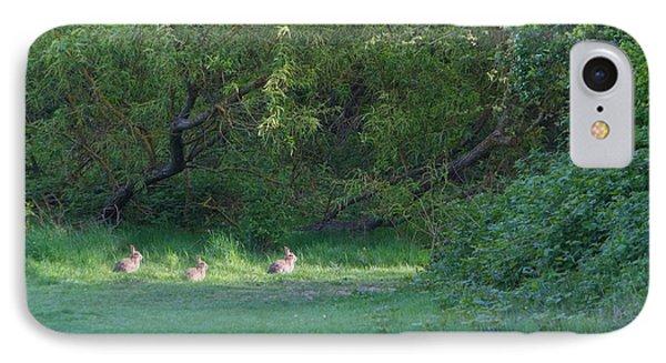 Rabbit Meadow IPhone Case