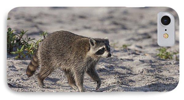 Raccoon On The Beach IPhone Case