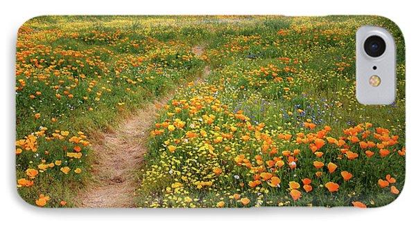 Rainbow Of Wildflowers Bloom Near Diamond Lake In California IPhone Case