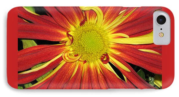 Red And Yellow Flower IPhone Case