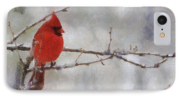 Red Bird Of Winter IPhone Case