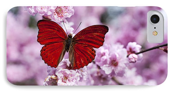Beautiful iPhone 8 Case - Red Butterfly On Plum  Blossom Branch by Garry Gay