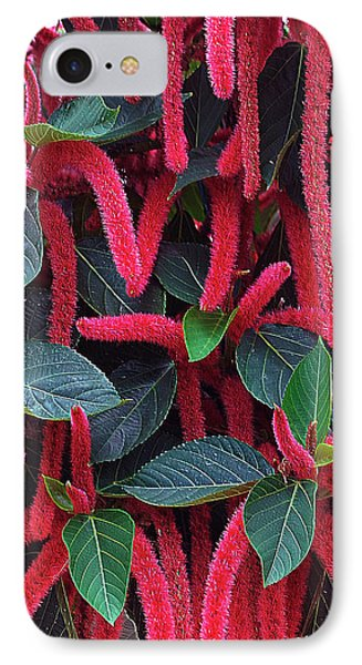 Red Chenille IPhone Case