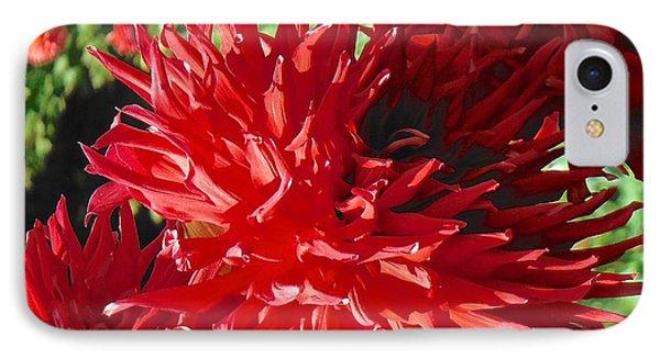 Red Dahlia Pizazz  IPhone Case