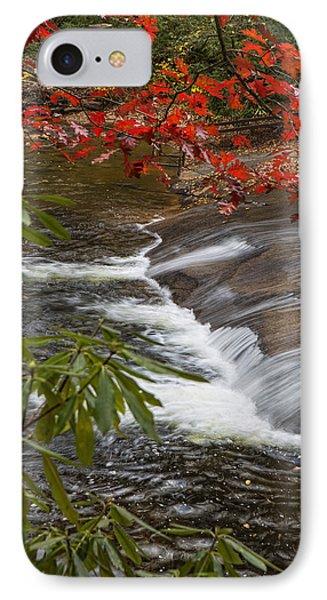 Red Leaf Falls IPhone Case