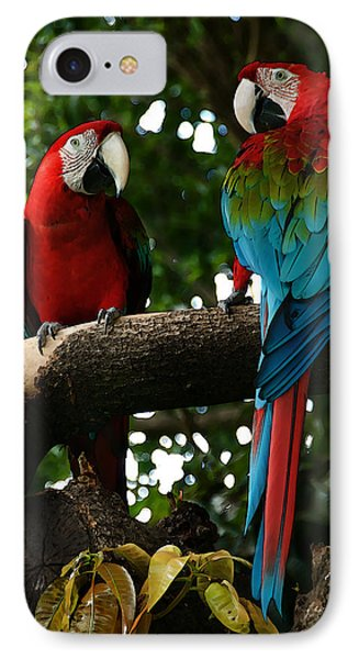 Red Macaws IPhone Case