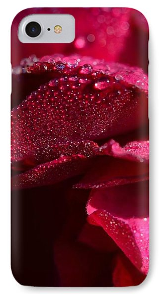 Red Rose And Dew IPhone Case