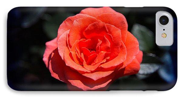 Red Rose Art IPhone Case