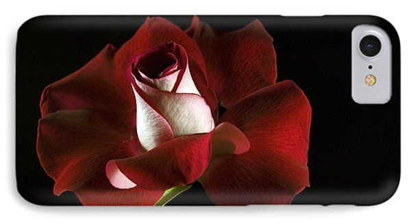 Red Rose Petals IPhone Case