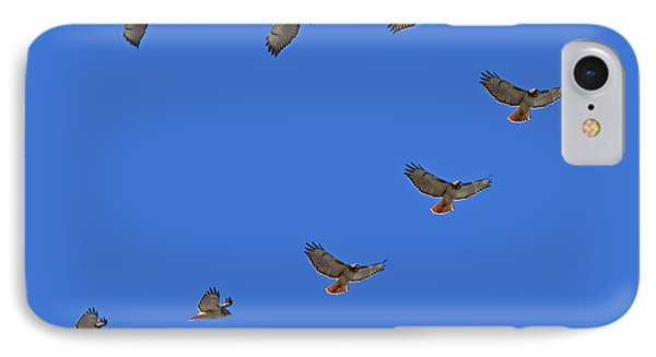 Red Tailed Hawk In Flight IPhone Case