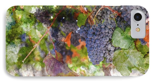 Red Wine Grapes On The Vine In Wine Country IPhone Case