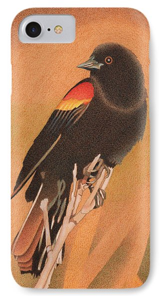 Red-winged Blackbird 3 IPhone Case